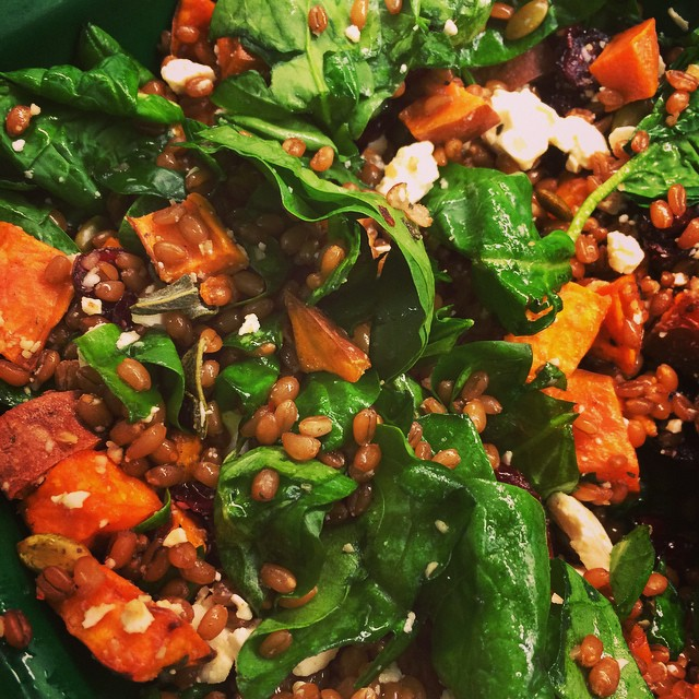 ROASTED SWEET POTATO + GRAIN SALAD:: *Available ALL WEEK in the Take Away Market