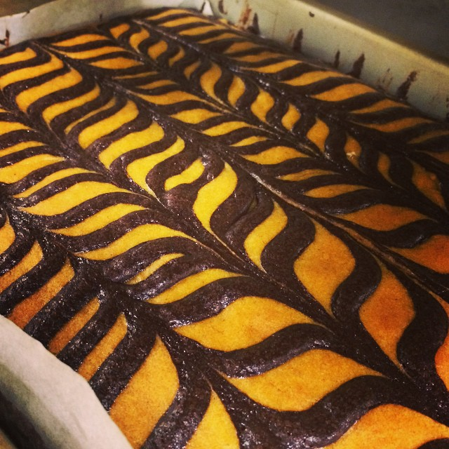 EVEN OUR TUXEDO BROWNIES LOOK LIKE HALLOWEEN:: *Available ALL WEEK in the Bakery
